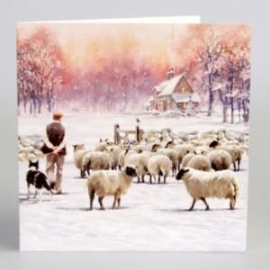 STC-Christmas-card-32-416x416
